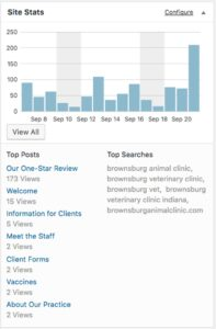 Brownsburg Animal Clinic website statistics chart showing traffic to 'Our One-Star Review'