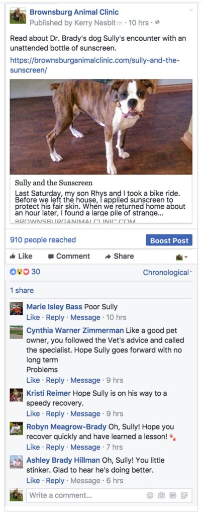 Brownsburg Animal Clinic Facebook post linking to 'Sully and the Sunscreen' post
