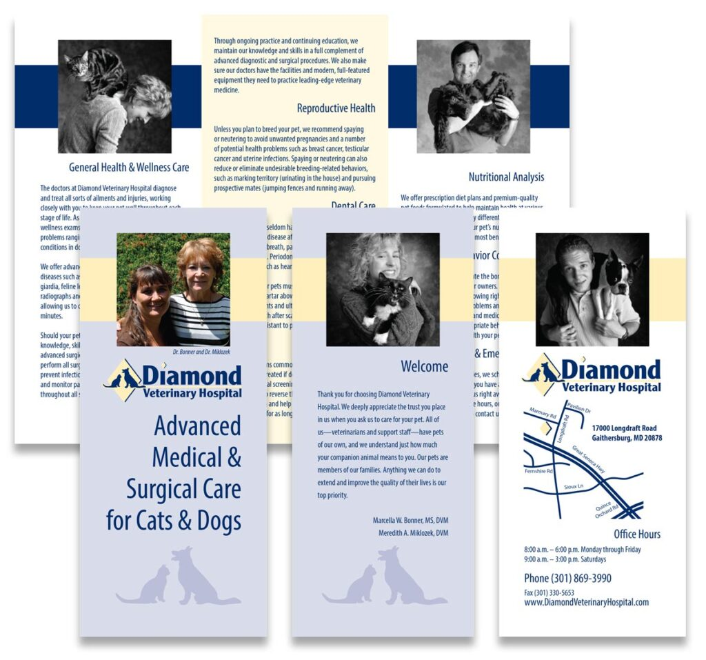 """Diamond Veterinary Hospital """"Advanced Medical and Surgical Care for Cats and Dogs"""" brochure"""