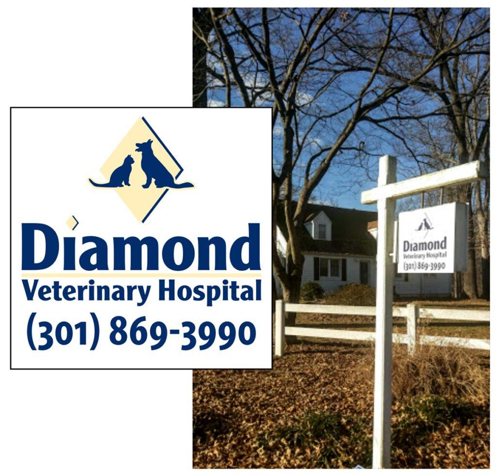 Diamond Veterinary Hospital Sign